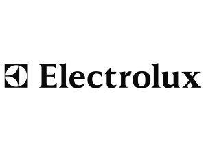 Electrolux-logo-old-wordmark-300x225